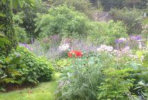 Candacraig Gardens