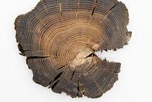 Textures bois / Détails de textures de bois