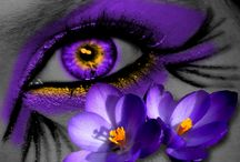 Passion For Purple / by Connie Gray