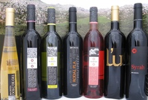 Wines from Spain / A country offering a diverse selection of wines covering all aspects of quality ,style and prices