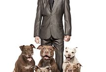 Dogs I love  / by Ramel Marable