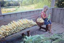 Preserving Fruit & Vegetables