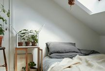 Dream house: ideas