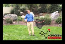 Chicken Coop Accessories / Accessories for your chicken coop to make it easier to clean and take care of your chickens.