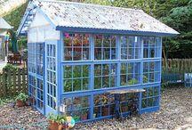 Gardening - Glasshouses/hothouses