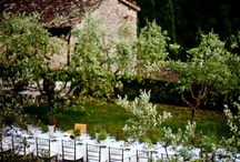 Your Italian Inspired Wedding / Inspiration and ideas for your very own Italian themed wedding