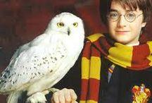 ♥ Harry Potter ♥ #2