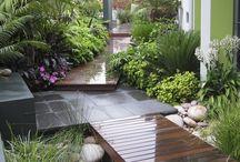 Courtyard Inspirations