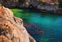 Point lobos California / Viajes