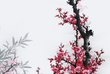水墨画 梅花 Cherry Blossoms