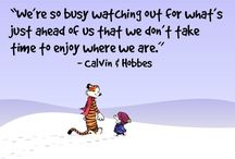 Calvin and Hobbes / by Jon Acuff