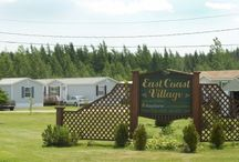 Land for lease and homes for sale in Picadilly, New Brunswick / Check out these great lands for lease and homes for sale in Picadilly, New Brunswick