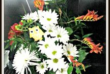 Shirley's Flowers and Friends / located in Three Hills, AB, 403-443-5818