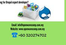 Drupal Website Development in Malaysia / We art the one of the Drupal Website Development in Malaysia