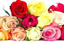 Valentinstag / Valentinstag Ideen - Verzaubere Deine Liebsten