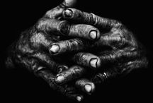 Hands Telling Stories /   / by Denise Maruna