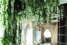 Plant Interior / Plant and indoor/outdoor DIY design