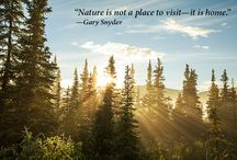 Nature-Inspired Quotes