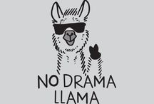 Funny Quotes No drama Liama