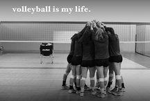 Team Volleybal
