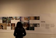 Exhibition Ideas / by Paul Pichugin