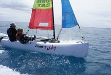 Hobie Cat / The Hobie Cat revolutionized multihull sailing and defined its culture. Now,  this Sailboat Hall of Fame inductee continually attracts great sailors and delivers serious adrenaline rushes worldwide.