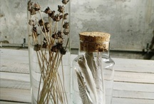 Curated Nature / Dried flowers and calligraphy.