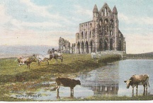 Whitby Postcards / Home of James Cook...and Dracula