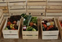 Our organic boxes / We deliver organic boxes to your home. To sign up, go to our website www.quintadoarneiro.pt