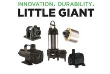Little Giant Outdoor Living Newsletters