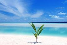 Reiseziele / Reiseziele, Ideen, Urlaubstipps