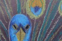 Knutselen/tekenen / Pauw pastelkrijt