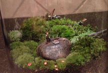 """Moss Terrarium:  """"Camping"""" / My first moss terrarium I made: Summer 2013 Materials:  Glass, pebbles, charcoal, sphagnum moss, organic soil, moss, rocks, twigs, lichen, faux mushrooms, figurines / by Raindrops and Roses"""