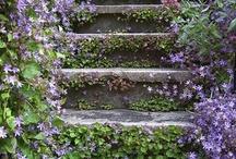 δρομάκια και σκαλιά