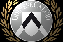 The Team of my Heart / Udinese Calcio