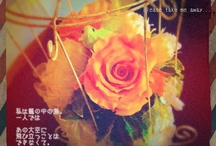 Days / #20120001