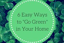 Going Green in Your Home / Tips on making your home more energy efficient and reducing your carbon footprint
