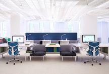 pet360Office space