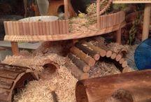 hamster kafes örnekleri