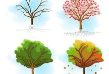 Menstrual Seasons