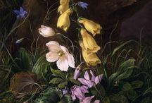 австрийского художника Franz Xaver Petter, признанного мастера натюрморта.