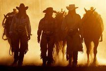 How bout them Cowgirls? / Miranda's board!