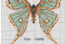 Vyšívání - Butterflies and Bugs