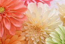 alte flori