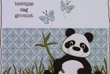 kaarten, dieren, beer
