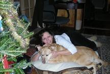 My Dog Zak