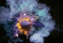 Powder Ideas