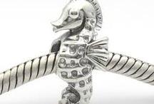 Pandora & James Avery charms / by Stephanie Wood
