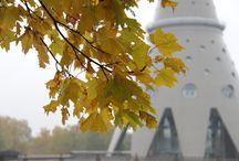 Осень в Останкино