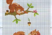 squirls/chipmunks / eekhoorns